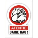 CAINE RAU